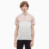 ao-polo-calvin-klein-regular-fit-222