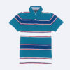 ao-polo-tommy-hilfiger-slim-fit-38